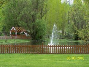 Pond with Fountain